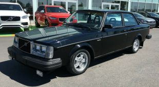 1981 Volvo 242 GLT Turbo on eBay Motors